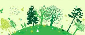 Un albero per ogni nuovo nato